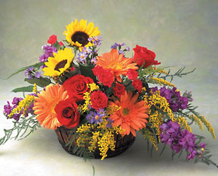 Fall Field of Flowers -A local Pittsburgh florist for flowers in Pittsburgh. PA
