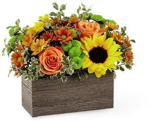 Happy Harvest Garden -A local Pittsburgh florist for flowers in Pittsburgh. PA