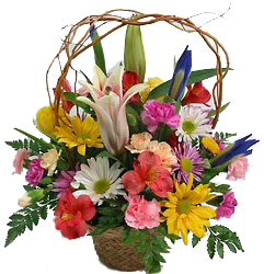 Spring Basket with curly willow -A local Pittsburgh florist for flowers in Pittsburgh. PA