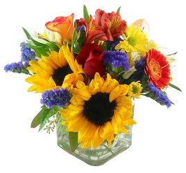 Sunrise Glory -A local Pittsburgh florist for flowers in Pittsburgh. PA