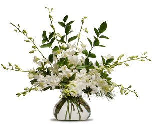 Simply White -A local Pittsburgh florist for flowers in Pittsburgh. PA