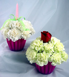 Blooming Cupcake -A local Pittsburgh florist for flowers in Pittsburgh. PA