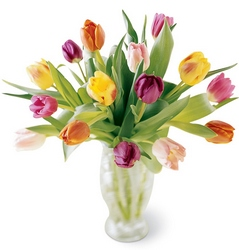 Mixed tulip vase -A local Pittsburgh florist for flowers in Pittsburgh. PA