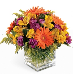 Wonderful Wishes  -A local Pittsburgh florist for flowers in Pittsburgh. PA