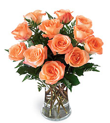 Sweet Citrus Bouquet -A local Pittsburgh florist for flowers in Pittsburgh. PA