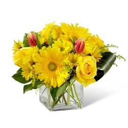 Spring Sunshine Bouquet -A local Pittsburgh florist for flowers in Pittsburgh. PA