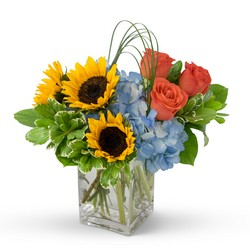Fun in the Sun -A local Pittsburgh florist for flowers in Pittsburgh. PA