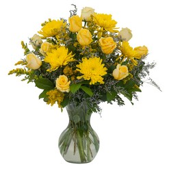 Roses and Sunshine -A local Pittsburgh florist for flowers in Pittsburgh. PA