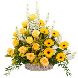 Ray of Sunshine Basket Tribute -A local Pittsburgh florist for flowers in Pittsburgh. PA