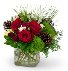 Wintertime Blooms -A local Pittsburgh florist for flowers in Pittsburgh. PA