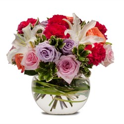 Potpourri of Roses -A local Pittsburgh florist for flowers in Pittsburgh. PA